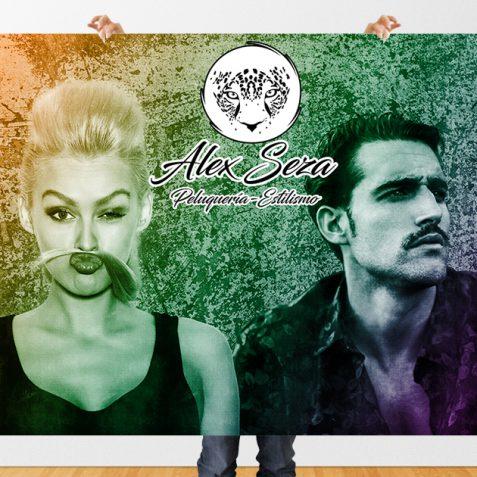 poster-alexseza